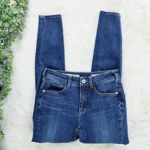 Pilcro & the LP High Rise Skinny Jeans Size 24